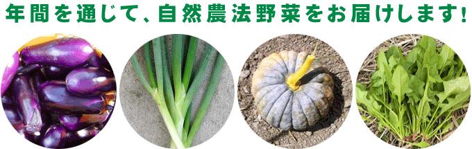 自然農法の野菜H30年産 新米のご注文